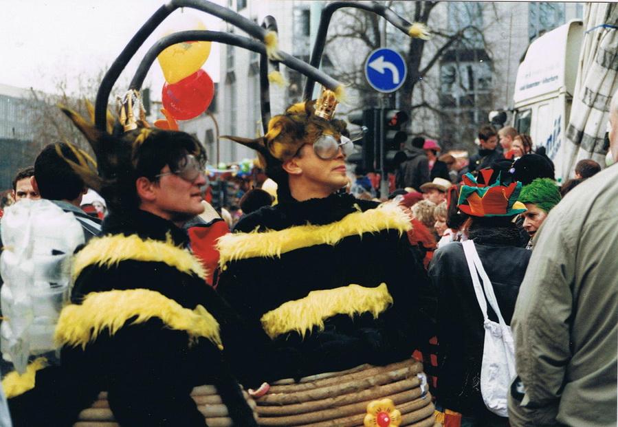 Biene im Bienenkorb 2007