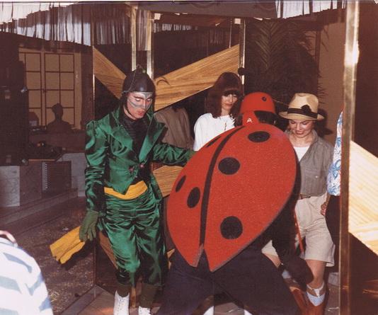 Insektenparty 1980